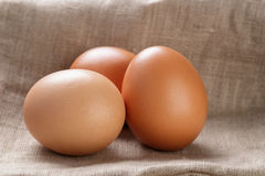 Brown eggs  on burlap or sack cloth Stock Image