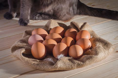 Brown eggs on burlap on a wooden table and a cat in the background Royalty Free Stock Photo