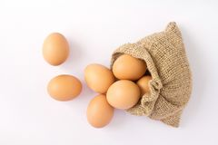 Brown eggs in canvas sack Stock Image