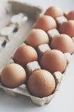 Brown eggs in cardboard box. Fresh brown eggs in cardboard box Stock Image