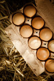 Brown eggs in a cardboard carton on straw Stock Photo
