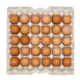 Brown Eggs in Cardboard Tray Stock Photography