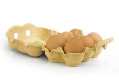 Brown eggs in cardbox Stock Image