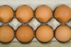 Brown Eggs in Carton. Fresh brown eggs in carton background, close up Stock Images