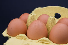 Brown Eggs in Carton Stock Photos