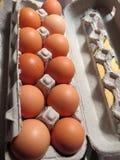 Brown eggs in  carton Royalty Free Stock Photo
