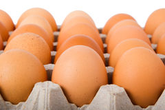 Brown eggs in a carton. Isolated on a white background Royalty Free Stock Photography