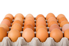 Brown eggs in a carton. Isolated on a white background Stock Images