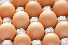 Brown eggs in carton tray Royalty Free Stock Images
