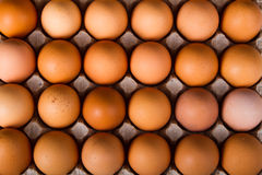 Brown eggs in a carton. On a white background Stock Images