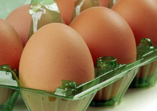 Brown eggs close up Royalty Free Stock Image