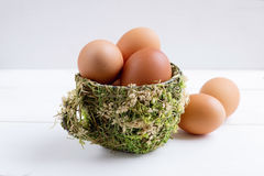 Brown eggs in decorative cup Stock Photography