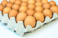 The brown eggs in egg box Royalty Free Stock Images