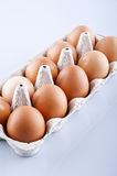 The brown eggs in egg box Stock Image