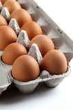 Brown Eggs in an Egg Carton. Photograph of brown eggs inside a paper egg carton on a white background royalty free stock photography