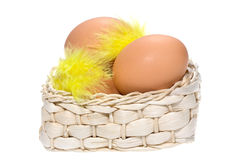 Brown eggs with feathers in basket Stock Photos