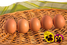 Brown eggs with flowers of viola tricolor on wicker tray. Royalty Free Stock Images
