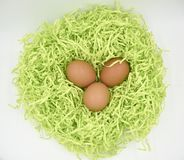 Brown eggs in the green nest made of crumpled paper ob the white background stock photo