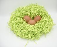 Brown eggs in the green nest made of crumpled paper ob the white background. Brown eggs in the green nest made of crumpled paper on the white background royalty free stock photos