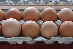 Brown Eggs. Large brown eggs in egg carton Stock Images