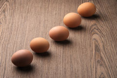 Brown eggs in a line Stock Photos