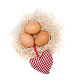 Brown eggs in a nest Royalty Free Stock Photos