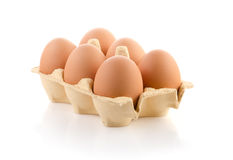 Brown eggs in the package Stock Images