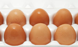 Brown eggs in packing Stock Images