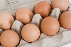 Brown Eggs in Paper Carton Royalty Free Stock Images