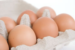 Brown Eggs in Paper Carton stock photography