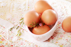 Brown Eggs in a porcelain bowl Royalty Free Stock Images