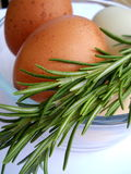 Brown Eggs and Rosemary Royalty Free Stock Photos