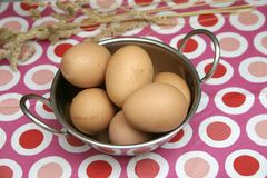 Brown Eggs. Some raw, brown eggs in a bowl Royalty Free Stock Photography
