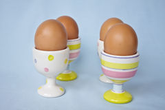 Brown eggs in spring pastel egg cups. Stock Photos