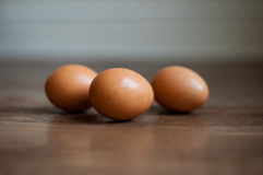 3 brown eggs. Three brown speckled eggs on farmhouse wooden floor, food ingredients Royalty Free Stock Images