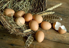 Brown eggs and wheat Stock Photos