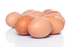 Brown eggs. On white background Royalty Free Stock Photos