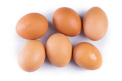 Brown eggs. On white background Stock Images