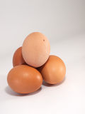 Brown eggs on the white background Stock Images