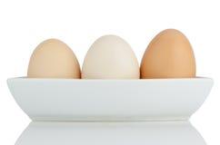 Brown eggs in white ceramic bowl Royalty Free Stock Photos