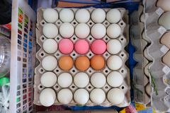Brown eggs white eggs and pink eggs in black tray. Brown eggs white eggs Salted eggs and pink eggs Preserved eggs or Century eggs in black tray Stock Photos