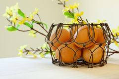 Brown eggs in a wire basket. In natural light with yellow spring flowers in the background Stock Image