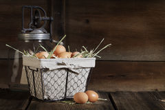 Brown Eggs in Wire Basket Royalty Free Stock Images
