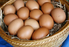 Brown eggs in wooden basket Royalty Free Stock Images