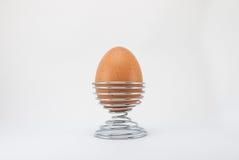 Brown-Ei auf Metallstandhalter Stockbilder
