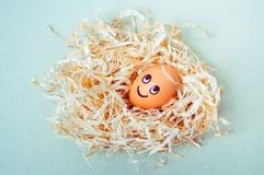 Brown-Ei mit lustigem Engelsgesicht in einem Nest Stockbilder
