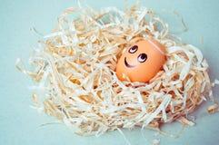 Brown-Ei mit lustigem Engelsgesicht in einem Nest Lizenzfreie Stockfotografie