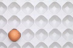 Brown-Ei mit Paket Lizenzfreie Stockbilder