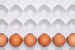 Brown-Ei mit Paket Lizenzfreie Stockfotografie
