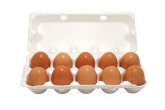 Brown-Eier in der Verpackung Lizenzfreie Stockfotos